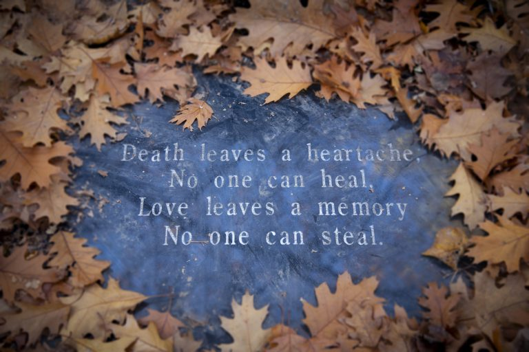 Dried, browned oak leaves on a background of blue/gray granite with text in the middle reading